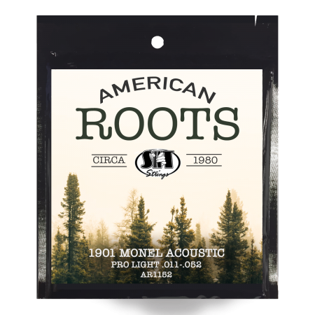 american-roots-monel-acoustic